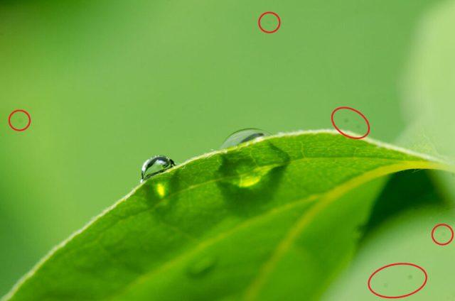 Dust spots on the camera sensor