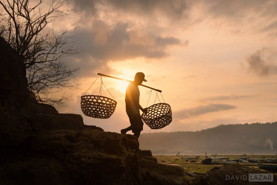 11. David Lazar - Bali Seaweed Farming