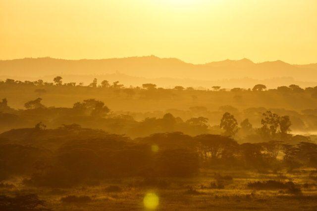 14. Ishasha Sunrise, Uganda