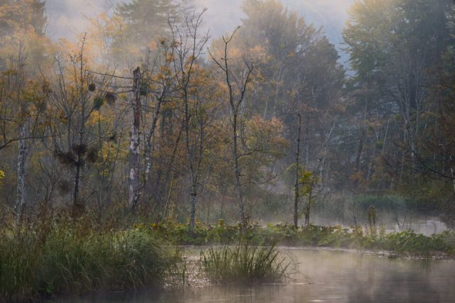 4. Foggy Morning at Plitvice