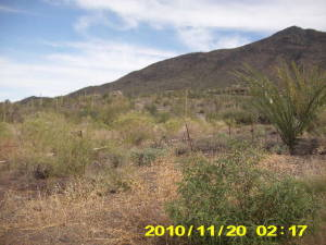 36250 N 58 Street, 38, Cave Creek, AZ 85331