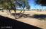 10525 W CONNECTICUT Avenue, Sun City, AZ 85351