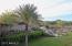 13194 W Lone Tree Trail, Peoria, AZ 85383
