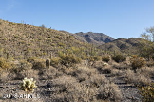 This 5 acre parcel goes up the hill and has spectacular mountain views.