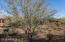 Desert Wash view