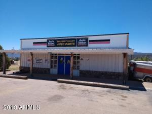 47817 E HIGHWAY 288 Highway, Young, AZ 85554