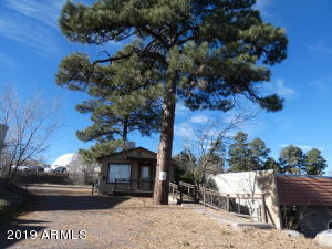 621 E OLD LINDEN Road, Show Low, AZ 85901