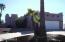16913 E Windchime Drive, Fountain Hills, AZ 85268