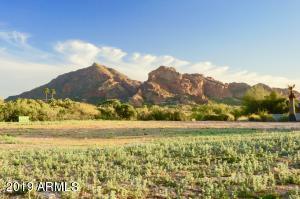 6710 N Joshua Tree Lane, 2, Paradise Valley, AZ 85253