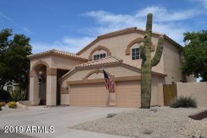 Saguaro cactus in the front yard