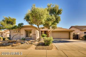 2441 E INDIAN WELLS Place, Chandler, AZ 85249