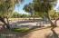 community playground area