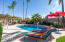 Massive backyard full of gorgeous palm trees and mature landscaping!