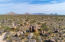 The Majestic McDowell Sonoran Preserve