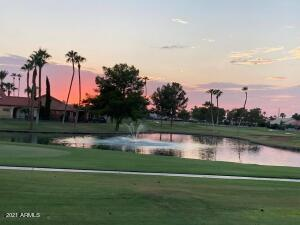25228 S FLAME TREE Drive, Sun Lakes, AZ 85248