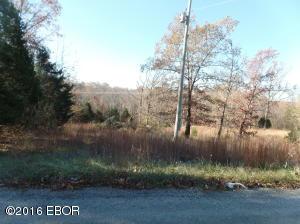 Tbd Robins Woods Ln, Tunnel Hill, IL 62972