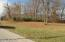 000 N Woodlawn Lane, Woodlawn, IL 62898