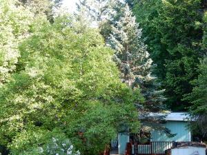 400 Panther Creek Road, Willow Creek, CA 95573