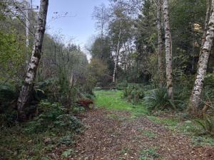 00 Mcdonald Creek Road, Trinidad, CA 95570