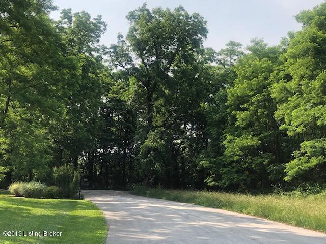 Lot 5 Mullins Ln, Louisville, Kentucky 40245, ,Land/lots,For Sale,Mullins,1534484
