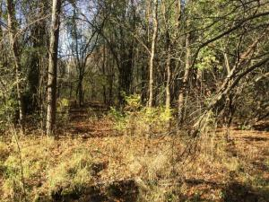 Property for sale at Lt3 County Road G, Dousman,  WI 53118