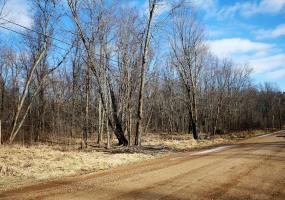 000 Drumheller Road, Bath, MI 48808, ,Vacant Land,For Sale,Drumheller,232609