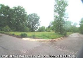 1341 Coolidge Road, East Lansing, MI 48823, ,Vacant Land,For Sale,Coolidge,233526