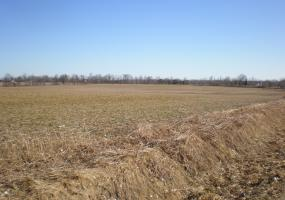 V/L Smith Road, Owosso, MI 48867, ,Vacant Land,For Sale,Smith,234780