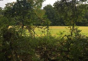 Parcel A B Nims Rd, Leslie, MI 49251, ,Vacant Land,For Sale,Nims Rd,241174