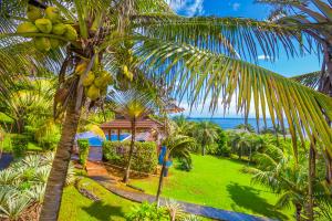 Caribbean views