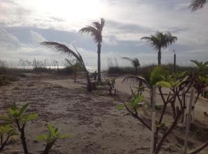 Property for sale at 3535 S Atlantic Avenue, Cocoa Beach,  FL 32931