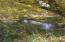 Creek V3