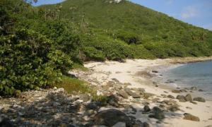 Easy Access to Beach