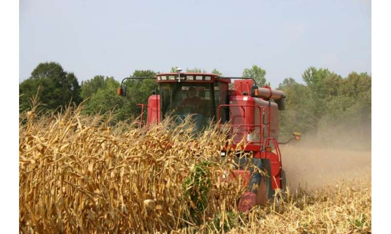 New UT study highlights environmental, economic shortcomings of federal biofuel laws