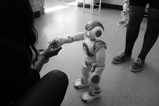 Sense-making processes of human-robot encounters