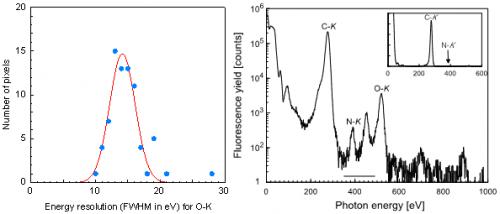 Lattice location determination of trace nitrogen dopants