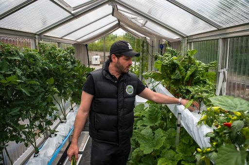 news berlin start up fish farm veggie garden l