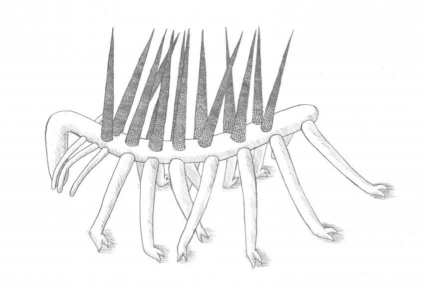 Worm-like creature with legs and spikes finds its place in