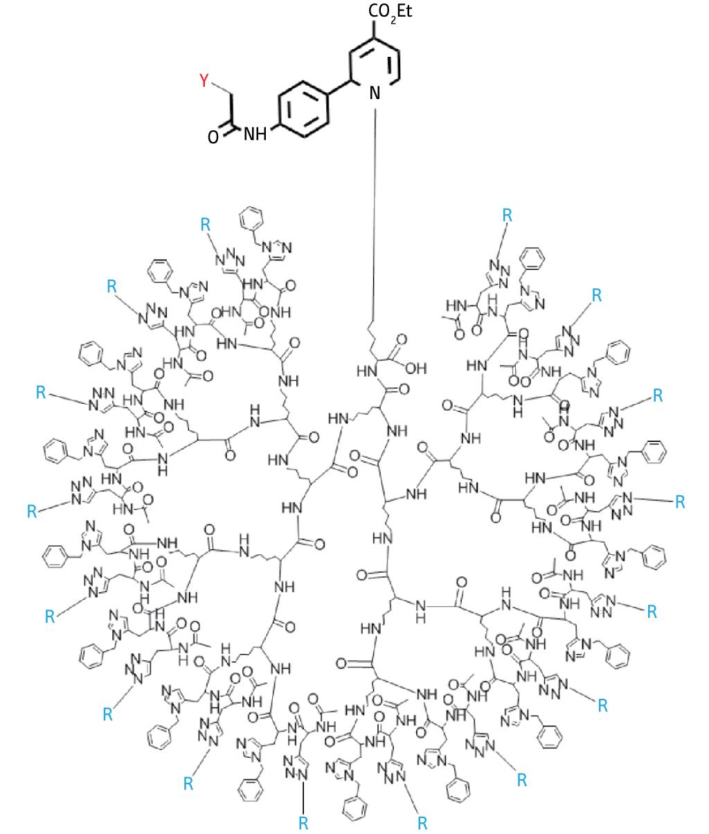 Large tree-like sugar clusters provide potential in vivo