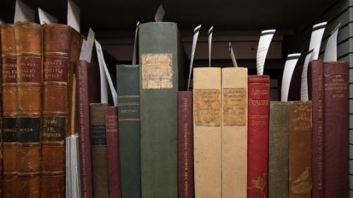 Darwin?s personal library put online
