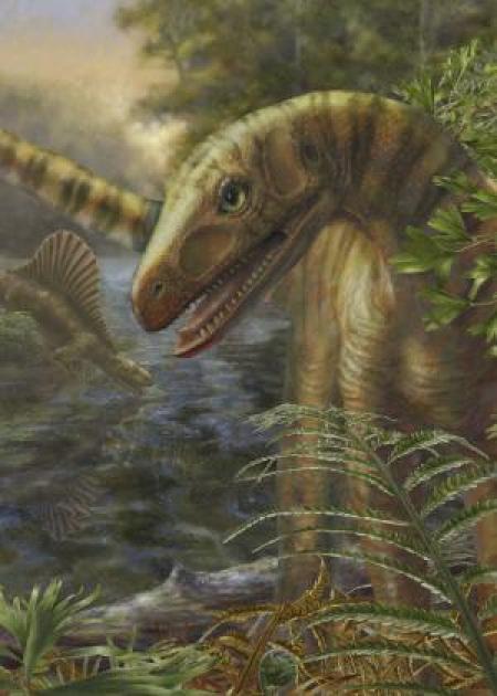 Predecessori Dinosaur guadagnare terreno in scia della più grande crisi della biodiversità del mondo