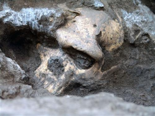 1.8M-year-old skull