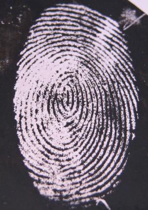"Figure 2 ""inverse fingerprint"" developed through use of gold/silver nanoparticles"