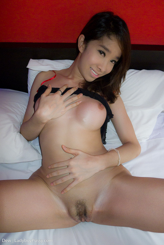 Sexy Post Op Pussy Post Op Ladyboys  C2 B7 Nude Ladyboy Sex