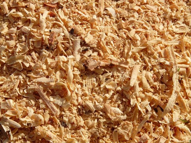 Sawdust Saw Wood  Free photo on Pixabay