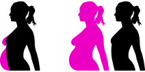Pregnancy, Reproduction, Months, Profile