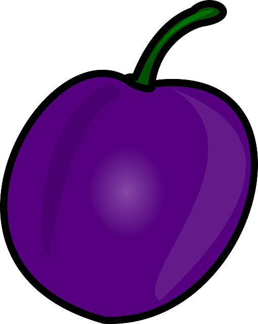 free vector graphic prune plum