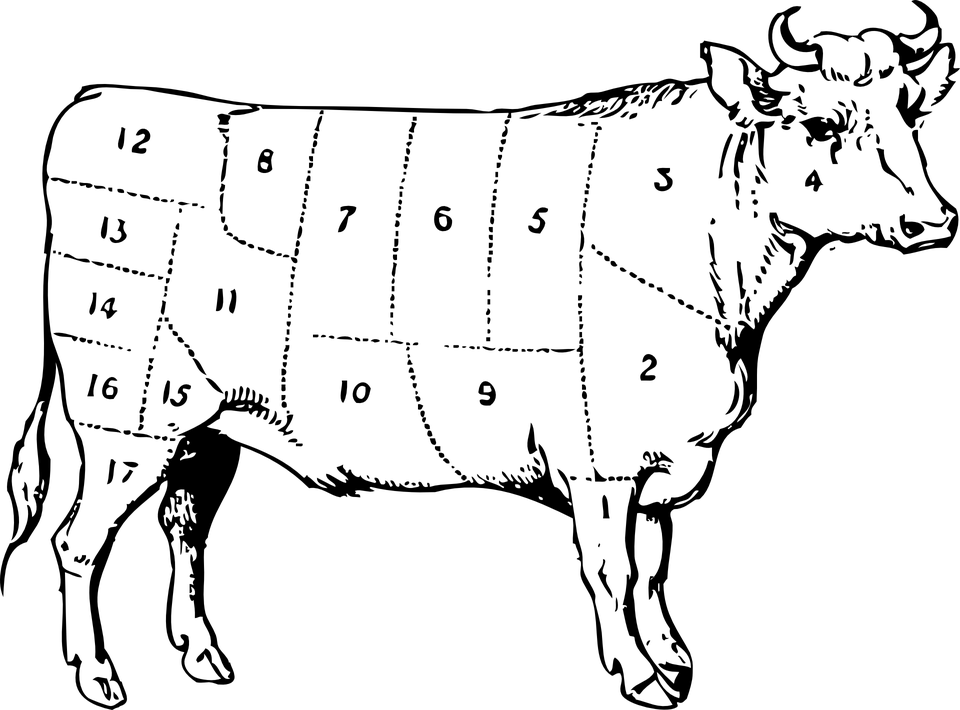 Cow Beef Cuts · Free vector graphic on Pixabay