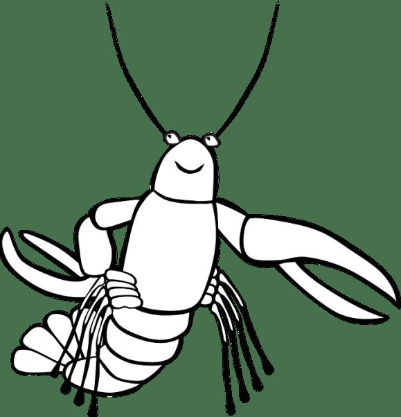 Udang Karang Laut Makanan Gambar Vektor Gratis Di Pixabay