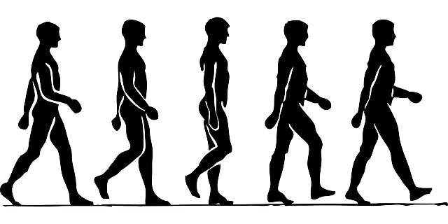 People Walking Silhouette · Free vector graphic on Pixabay